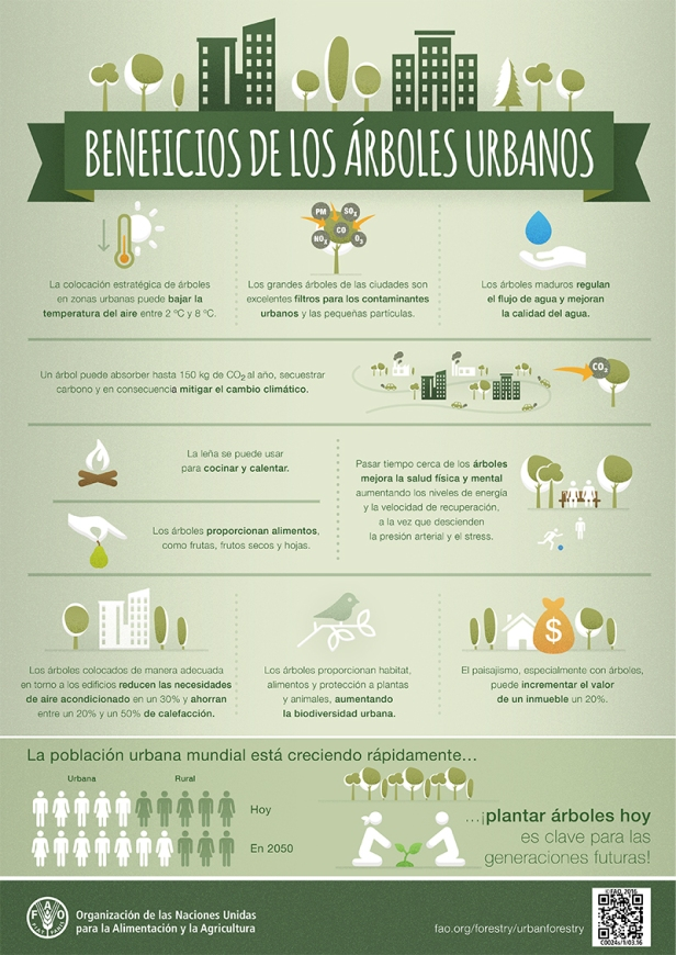 FAO-Infographic-UrbanTrees-es.jpg
